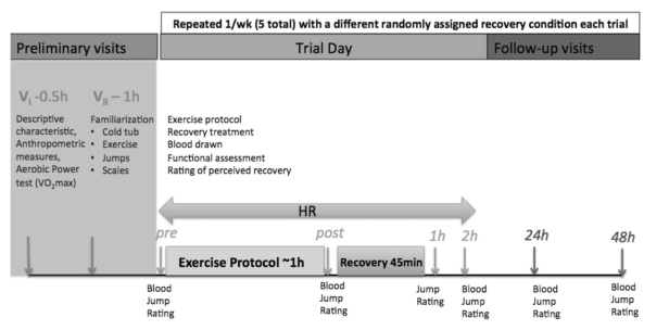 Schematic representation of relative timing of experimen- tal procedures. Muscle performance and ratings of perceived sore- ness and impairment were conducted pre-, immediately post-, and at 1, 2, 24, and 48 h post-exercise. Blood samples were taken at each time point excluding 1 h post-exercise. The exercise protocol, includ- ing warm-up and cool-down, was roughly 1 h in duration. Follow- ing a 15 min lapse in which participants returned to the laboratory, completed post-exercise testing, and changed into swim shorts, the recovery period commenced, lasting 45 min for each experimental condition (immersion time plus passive rest on a chair up to 45 min), such that the next time point was 1 h post-exercise (15 min lapse plus 45 min recovery period)