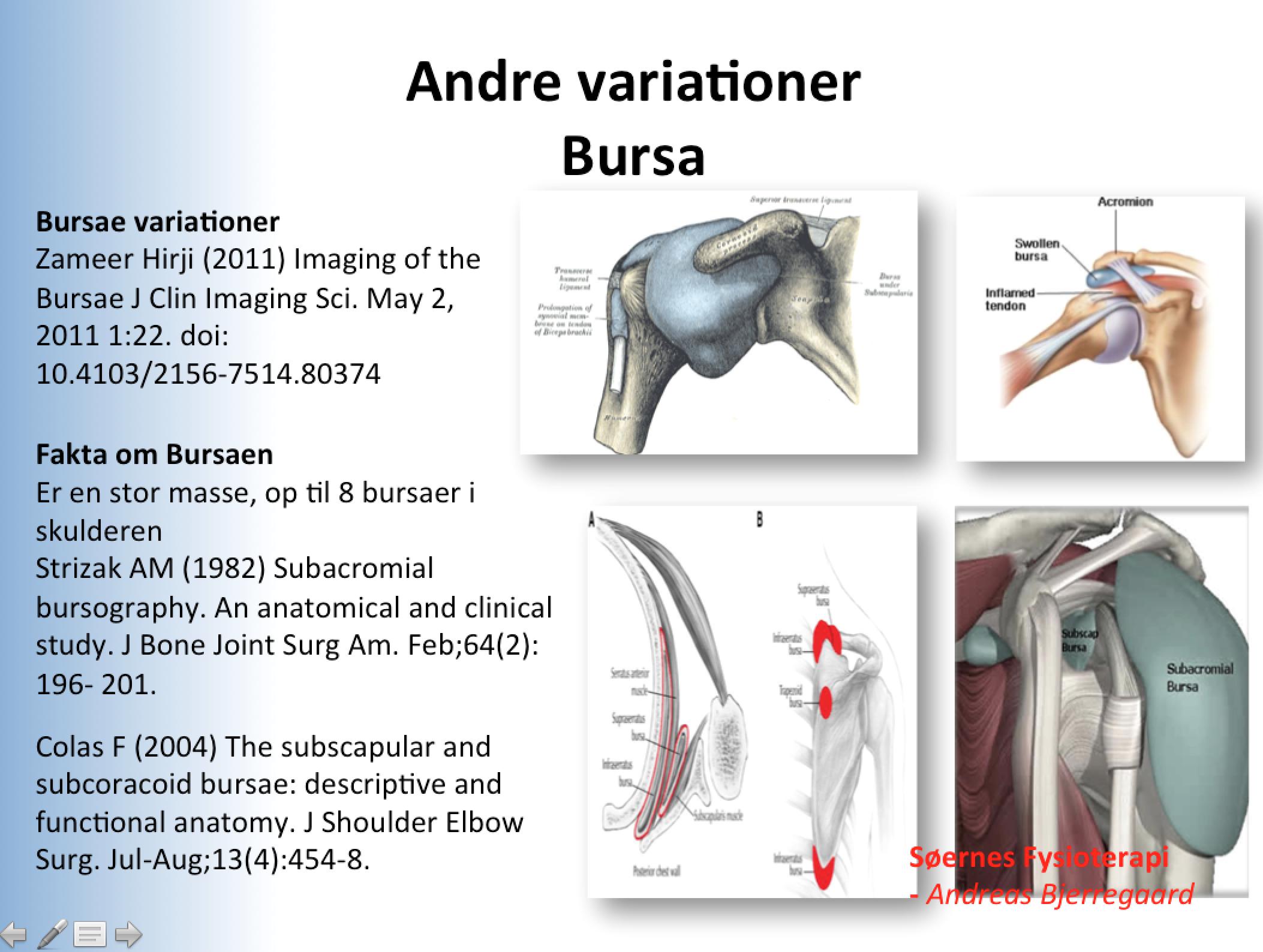 Fein Subscapular Bursitis Ideen - Menschliche Anatomie Bilder ...