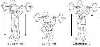 Con-vs.-Ecc-Squats.png